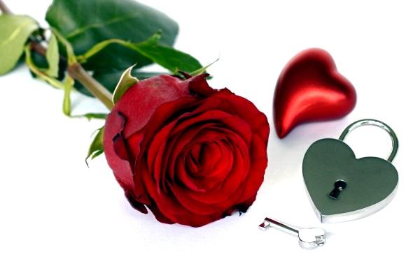 valentines-day-3086285_960_720